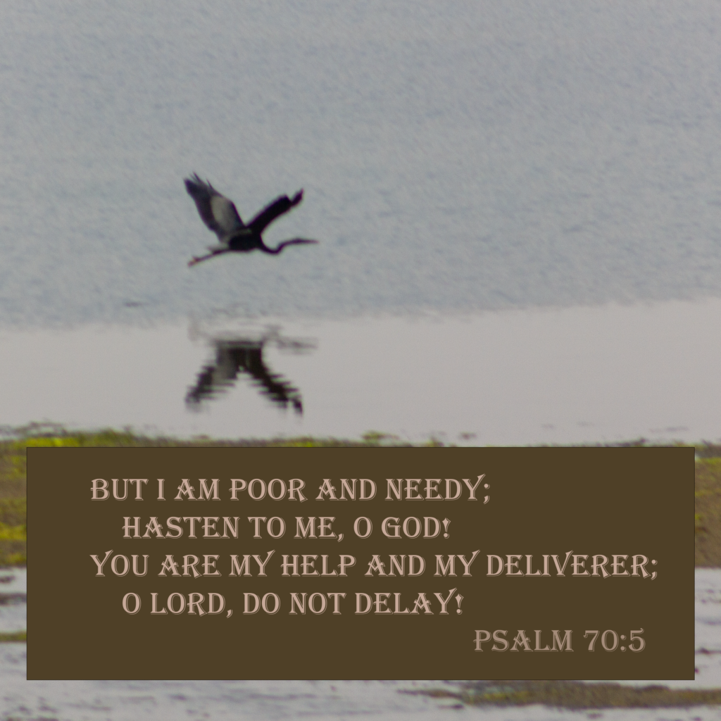 But I am poor and needy; hasten to me, o God! You are my help and my deliverer; o Lord, do not delay! Psalm 70:5