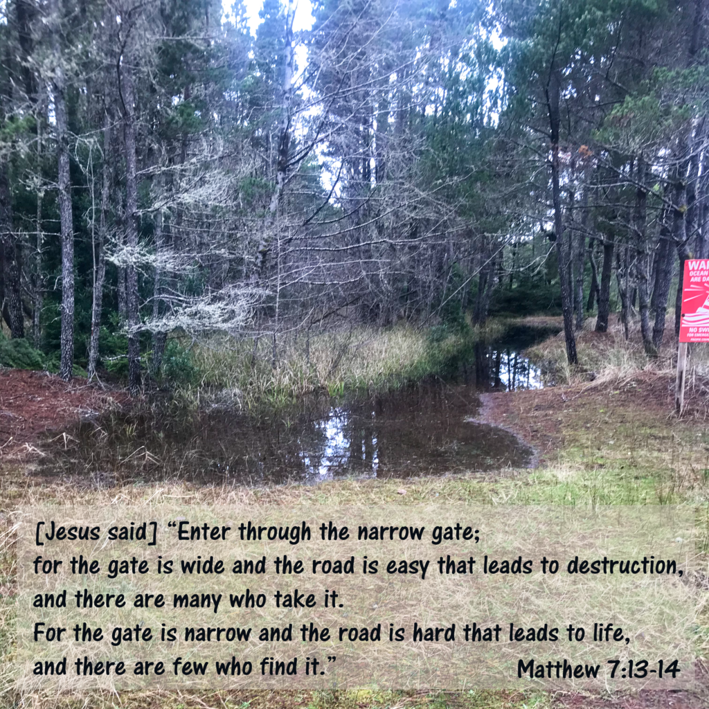 "[Jesus Said] ""Enter through the narrow gate; for the gate is wide and the road is easy[d] that leads to destruction, and there are many who take it. For the gate is narrow and the road is hard that leads to life, and there are few who find it."""